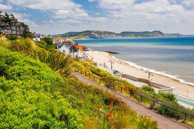 view of Lyme Regis beach in Dorset from the gardens